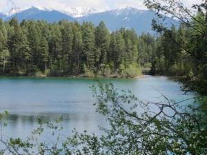 Kikomun Creek Provincial Park